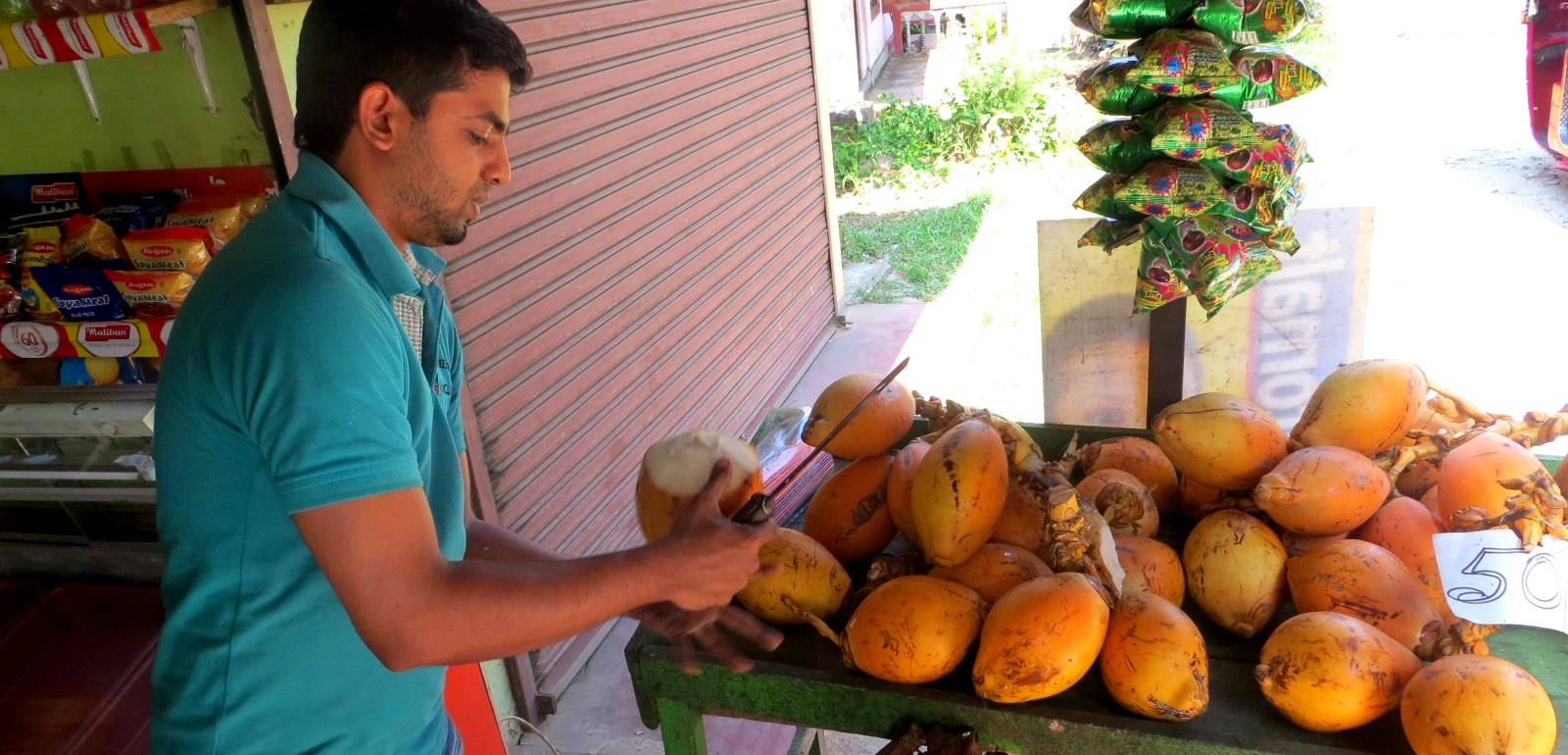 king-coconut-koenigskokosnuss-sri-lanka-kandy