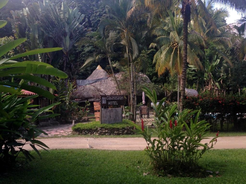 palenque-mexiko-chiapas (5)